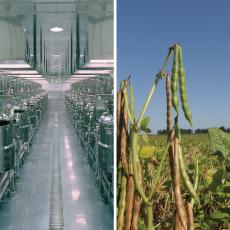 世界一の製餡工場と北海道十勝との信頼関係のイメージ写真